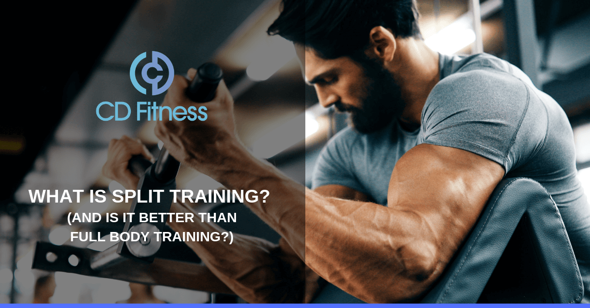 2d3c6d1f1a3 What Is Split Training  (And Is It Better than Full Body Training ...